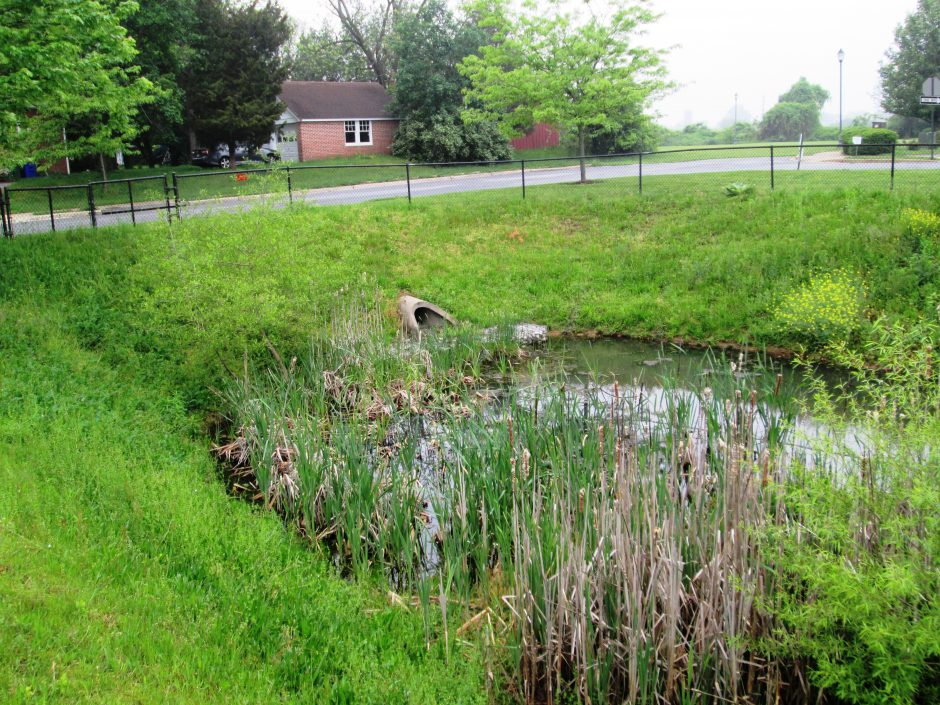 Pipe Draining to Pond at Church (looking Northeast from MD 180)